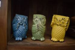 Wise Owl Set 3